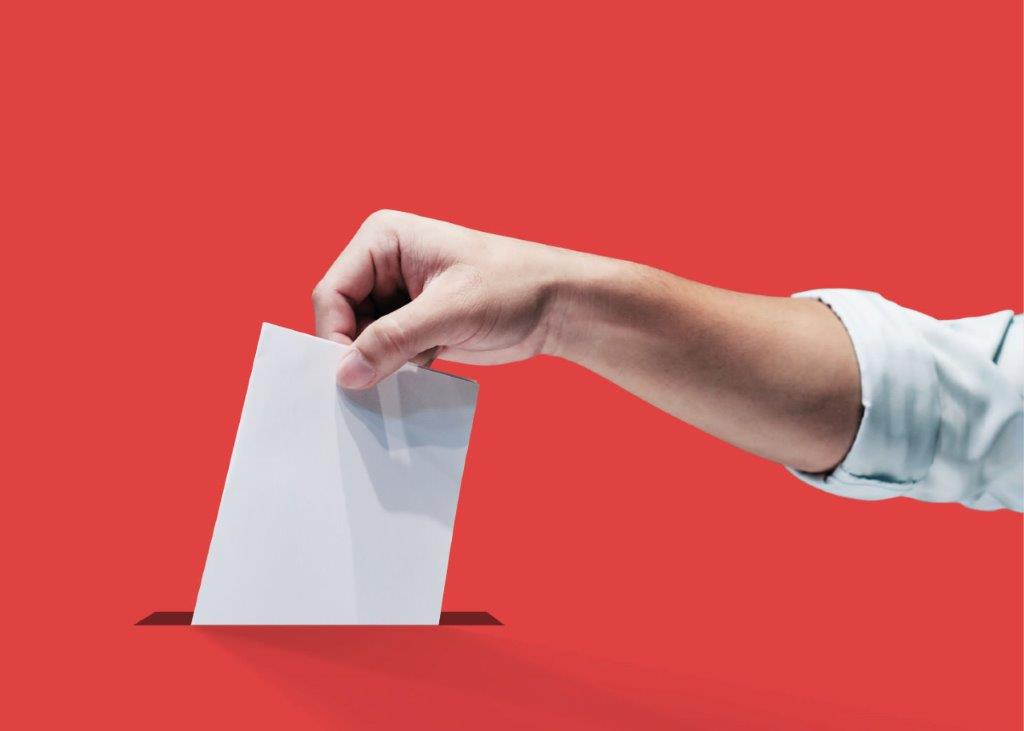 RCVS news: Voting opens in the 2020 RCVS and VN Councils elections