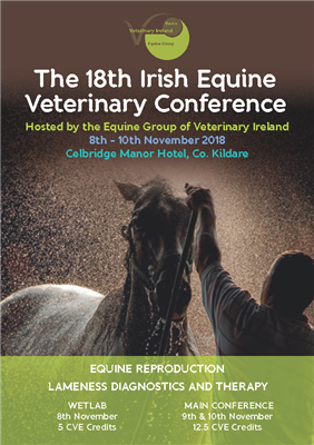 Attend Renate Weller's lecture at the 18th Irish Equine Veterinary Conference