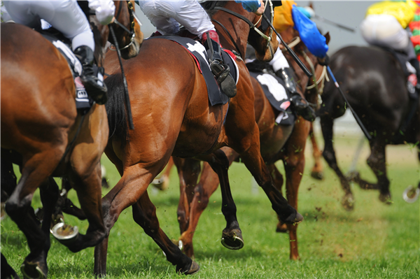 Management of hormone related poor performance in competition horses