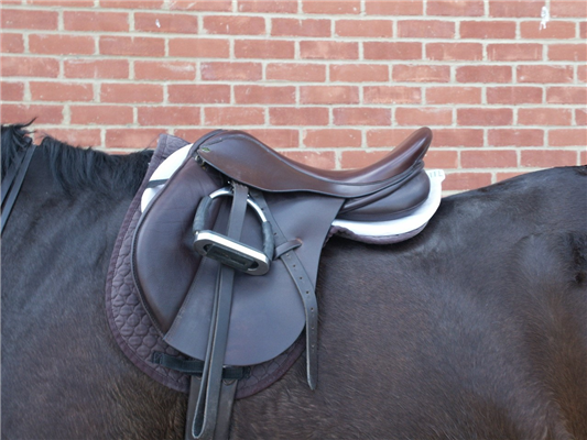 EVJ reports on the latest in saddle research