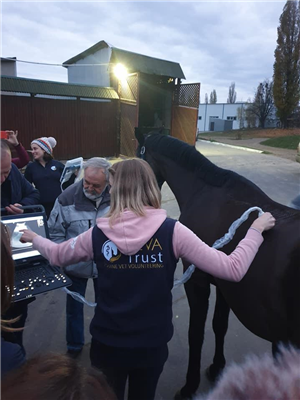 BEVA Trust volunteers return from the annual Equine Veterinary Seminar in Kiev