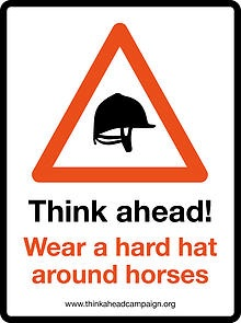 Vet Launches Hard Hat Campaign