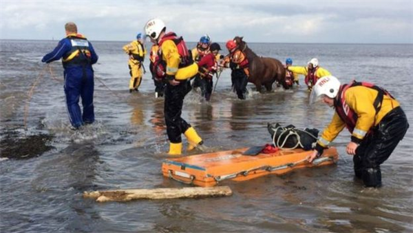 Horses rescued from drowning in Knott End, Lancashire