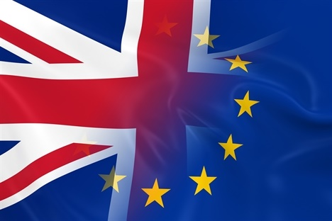 Brexit and the UK's Equine Sector