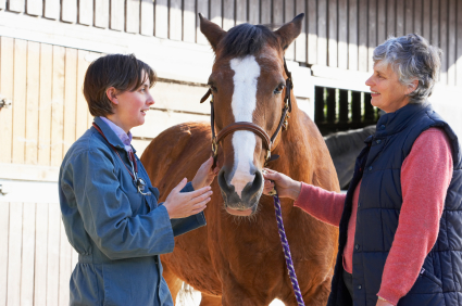 BEVA 'proud' of horse vets for safeguarding equine welfare