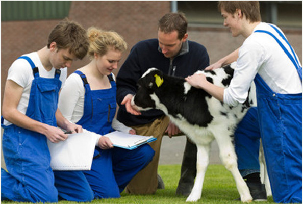 Keele University unveils plans to create multi-million pound veterinary school