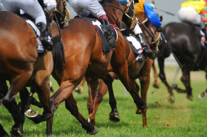 Racing Study finds no difference in performance between female and male jockeys but highlights that women are still getting fewer rides