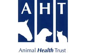 Animal Health Trust Vet champions ridden horse welfare with new video series